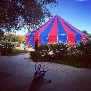 Circus Tent, Peaked, Round, Cirque Boheme